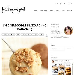 Snickerdoodle Blizzard (no bananas!) - Feasting on Fruit