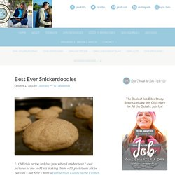 Best Ever Snickerdoodles - Women Living Well