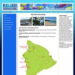 Big Island Snorkeling Secrets! The Complete Guide to Snorkeling the Big Island!