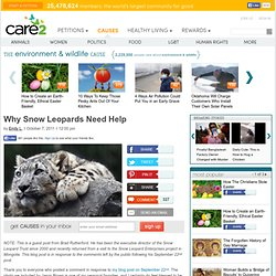 Why Snow Leopards Need Help