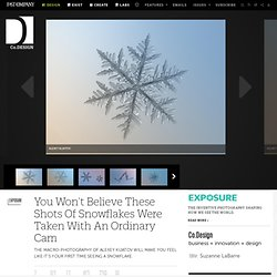 You Won't Believe These Shots Of Snowflakes Were Taken With An Ordinary Cam