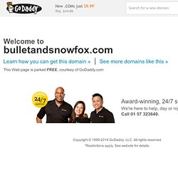 Bullet & Snowfox | Just another WordPress site