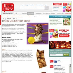 Snuggly Lion Halloween Costume - Halloween Costume Ideas