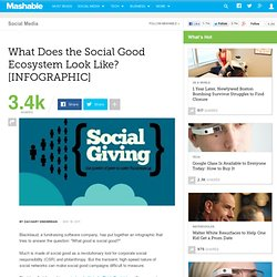 What Does the Social Good Ecosystem Look Like? [INFOGRAPHIC]