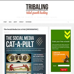 The Social Media Cat-A-Pult [INFOGRAPHIC]