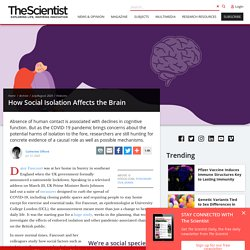 How Social Isolation Affects the Brain