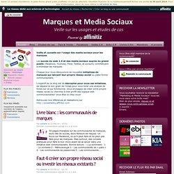 Veille sur l'usage des media sociaux pour les marques