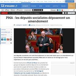 France : PMA : les députés socialistes déposeront un amendement