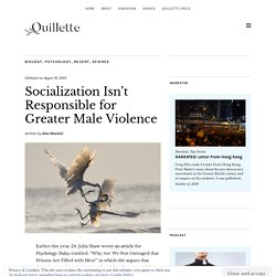 Socialization Isn't Responsible for Greater Male Violence