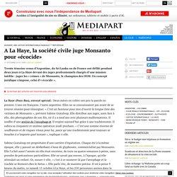 A La Haye, la société civile juge Monsanto pour «écocide»