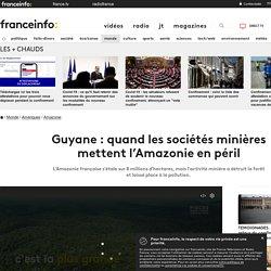 Guyane : quand les sociétés minières mettent l'Amazonie en péril
