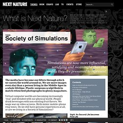Society of Simulations