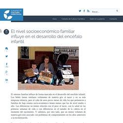 El nivel socioeconómico familiar influye en el desarrollo del encéfalo infantil
