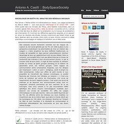 Sociologie en boîte vs. analyse des réseaux sociaux