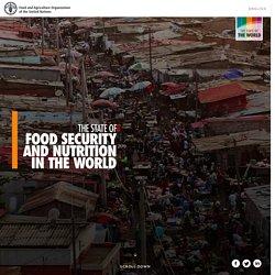 Où en est-on de la #FaimZéro? - FAO – Rapport digital
