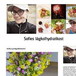 SOFIES LCHF -