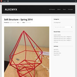 Soft Structure – Spring 2014 | ALXCWYX