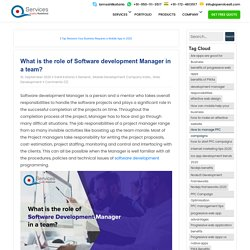 What is the role of Software development Manager in a team?