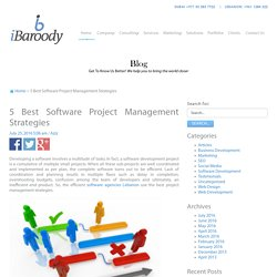 5 Best Software Project Management Strategies
