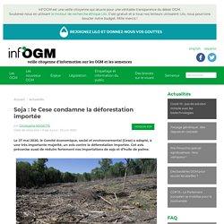 INFOGM 25/06/20 Soja : le Cese condamne la déforestation importée