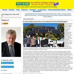 Un arbre solaire a pris racine sur le campus de l'Université de Perpignan (Tecsol blog)