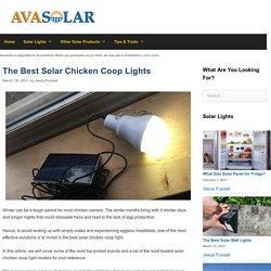 The 12 Best Solar Chicken Coop Light Reviews of 2021 - Avasolar