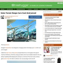 Solar Forest Keeps Cars Cool And Juiced
