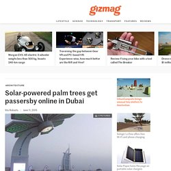 Solar-powered palm trees get passersby online in Dubai