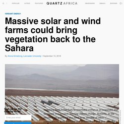 Massive solar and wind farms could bring vegetation back to the Sahara