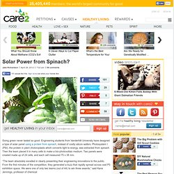 Solar Power from Spinach?