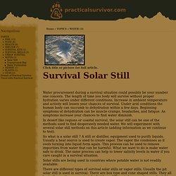 Practical Survivor