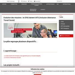 IATS Information Conseil Accompagnement en travail social en alternance