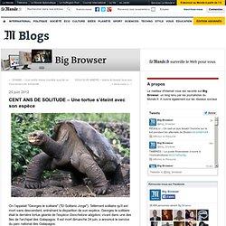 CENT ANS DE SOLITUDE – Une tortue s'éteint avec son espèce