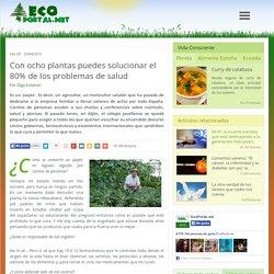 Con ocho plantas puedes solucionar el 80% de los problemas de salud