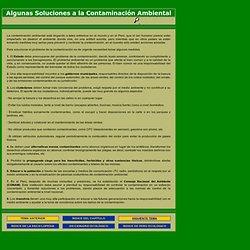 Algunas soluciones a la contaminación ambiental