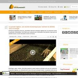 Le granulé végétal, une solution économique pour valoriser les déchets verts en énergie
