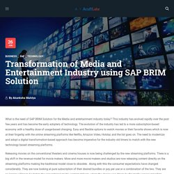 SAP BRIM Solution for Media and Entertainment Industry – Acuiti Labs