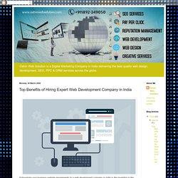 Oshin Web Solution - Best Digital Marketing Company in India: Top Benefits of Hiring Expert Web Development Company in India