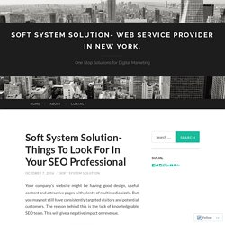 Soft System Solution- Things To Look For In Your SEO Professional