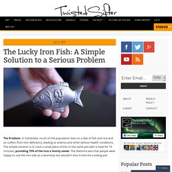 The Lucky Iron Fish: A Simple Solution to a Serious Problem