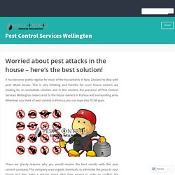 Worried about pest attacks in the house – here's the best solution! – Pest Control Services Wellington