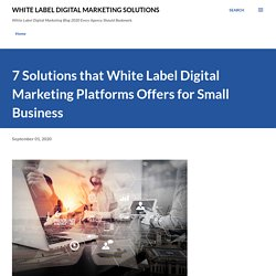 7 Solutions that White Label Digital Marketing Platforms Offers for Small Business