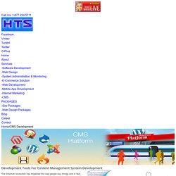 Best Offshore CMS Development Company