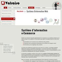 Système d'information et e-commerce