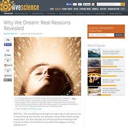 Why Do We Dream - Solving Problems During Sleep