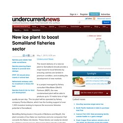 New ice plant to boost Somaliland fisheries sector