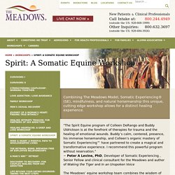 Somatic Equine Therapy Workshop