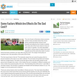 Some Factors Which Are Effects On The Sod Cost?
