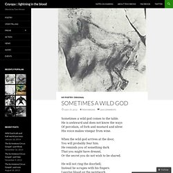 Sometimes a Wild God | Coyopa :: lightning in the blood