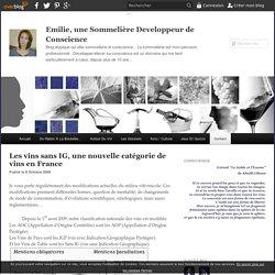 Les vins sans IG, une nouvelle catégorie de vins en France - Emilie, une Sommelière Developpeur de Conscience